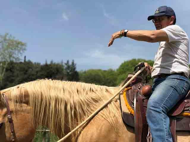 Hablar con caballos