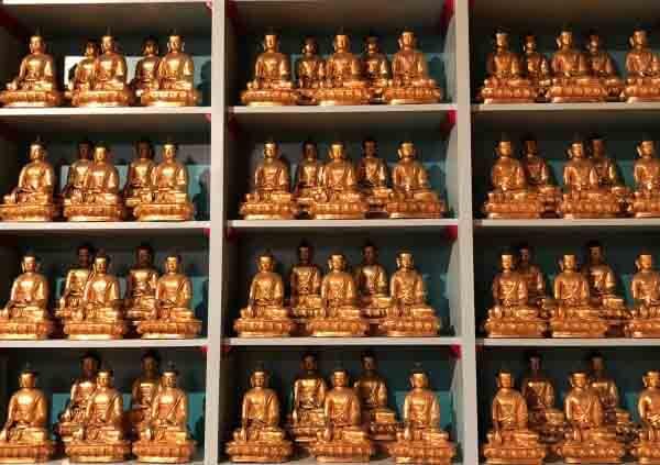 Monje budista en España