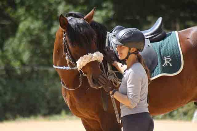 En la equitación conectada siempre empezamos trabajando sobre un caballete con silla