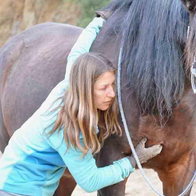 Evita la tension del caballo