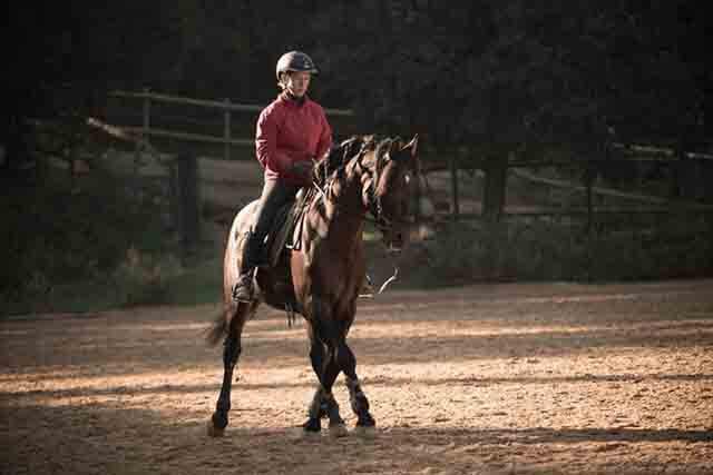 Recolocar la pelvis montando a caballo