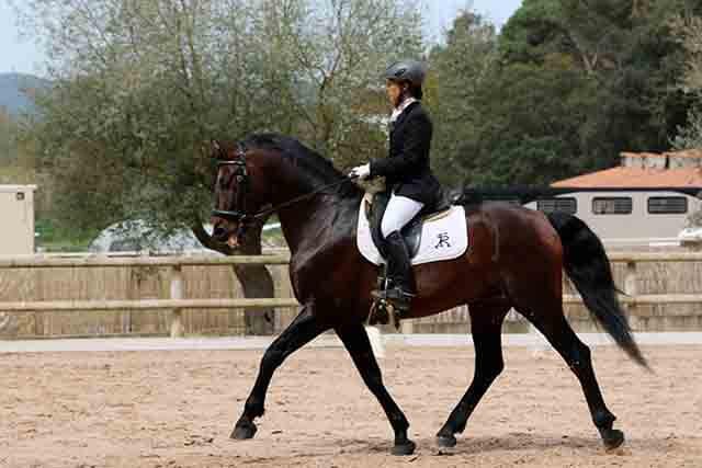 Sincroniza tus piernas con los pies del caballo