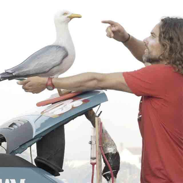 YEYO GUERRERO, ACTOR y SURFER