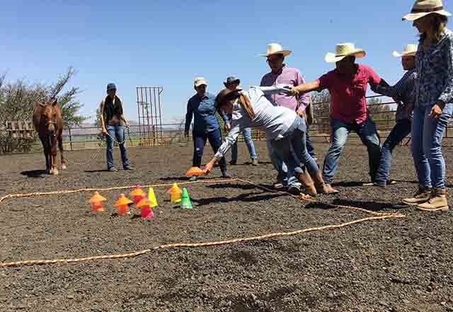 Coaching con caballos para empresas Equilibri