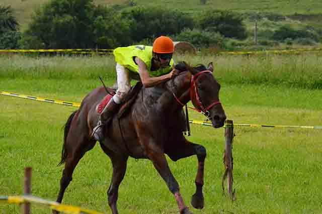 DANIEL LÓPEZ GARCÍA entrenamiento de un jinete de carreras