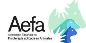 AEFA Asociacion española de fisioterapia aplicada a animales