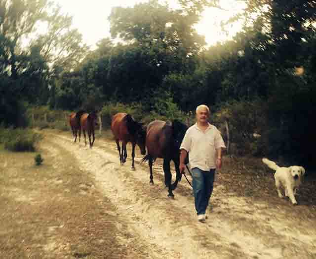 Confianza con los caballos