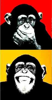 mi Yo observador y mi Mente de mono